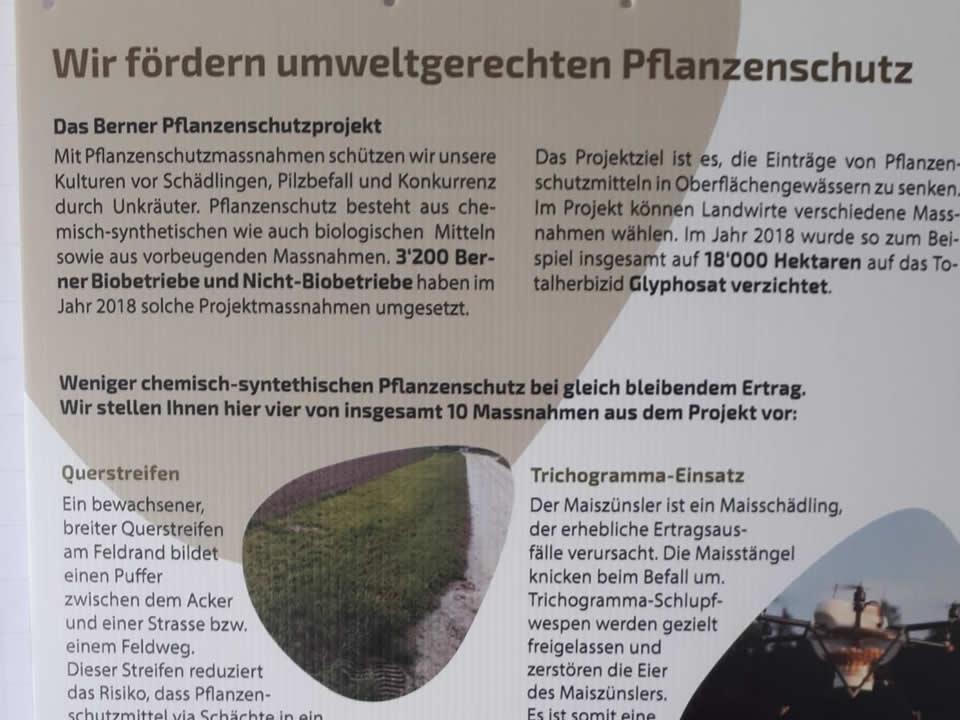 Plakat Berner Pflanzenschutzprojekt